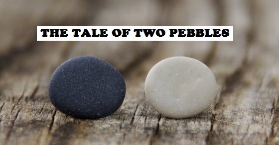 De Bono's tale of two pebbles